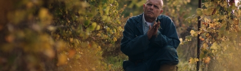Parkland Entertainment have released the official UK trailer for the drama From The Vine ahead of its upcoming cinematic and digital release.